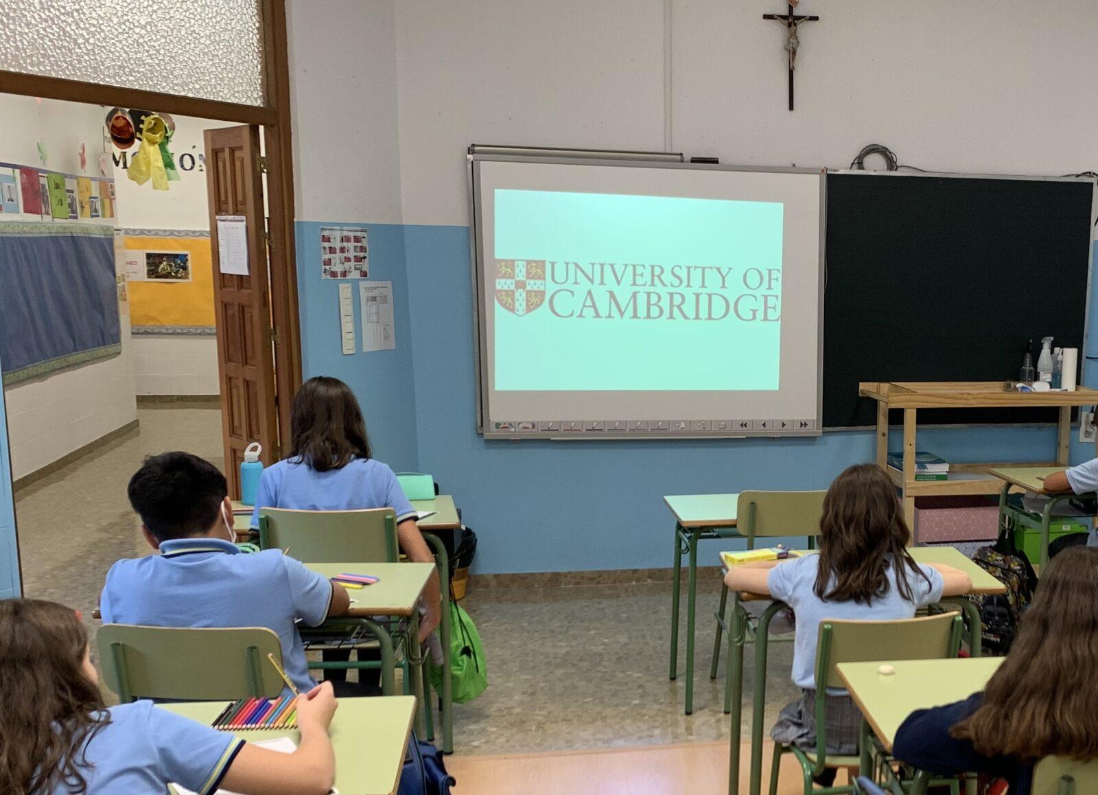 Colegio bilingue virgen de las angustias