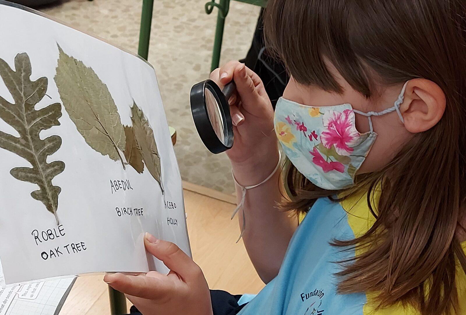 Educación primaria bilingüe colegio virgen de las angustias granada